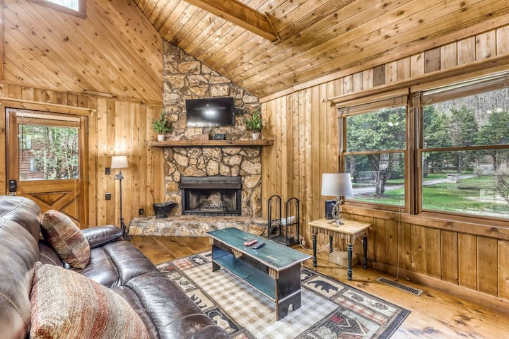 Waterfront cabin w/ private dock & hot tub, wood-burning fireplace, & swing!
