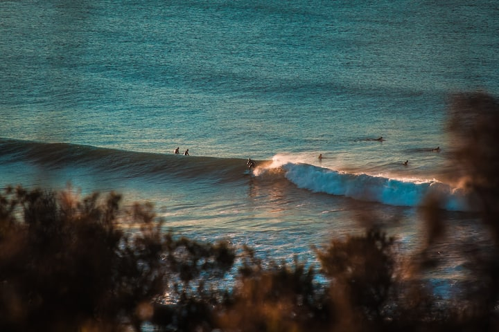 Tasty Waves :)