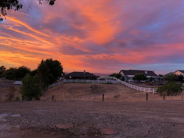 Sunset in the backyard