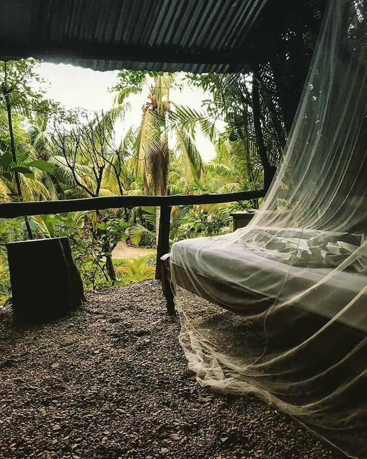 Unique hostel with jungle view, walk to the beach!