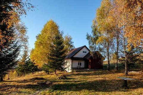 Blidarei -Transilvanian Haven