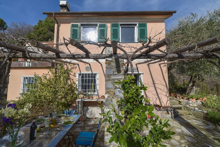 Villa in Rapallo with Terrace, Garden, Veranda, Barbecue