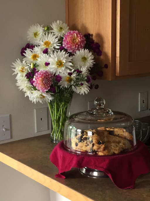 Guests are provided home comforts of delicious baked goodies.