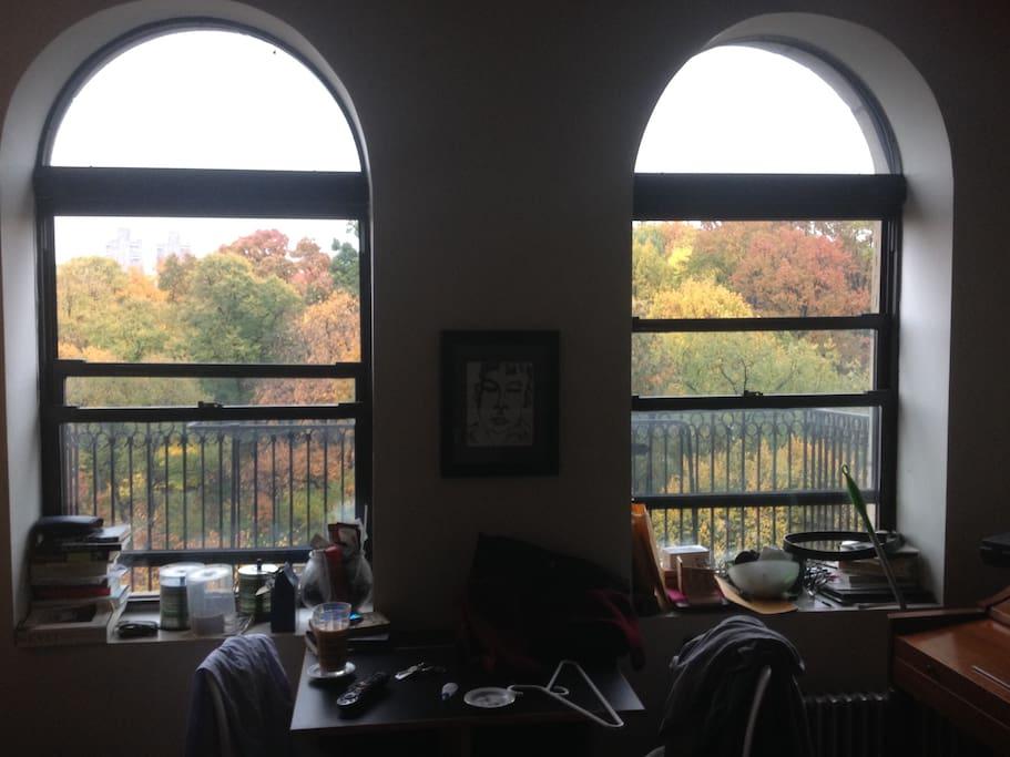 Windows facing Central Park