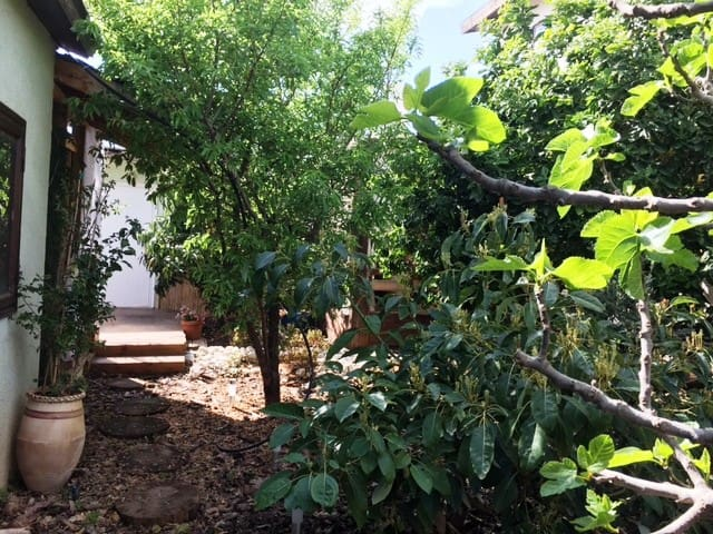 The fruit garden guesthouse :) - Kfar Yona - Guesthouse