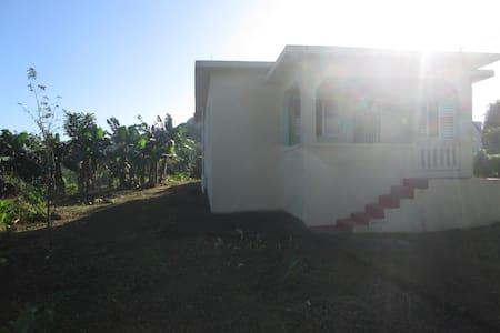 House with big garden near Ocho Rios - Saint Ann's Bay - Hus