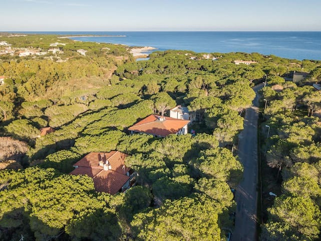 IL PINETO 1: economic holiday home
