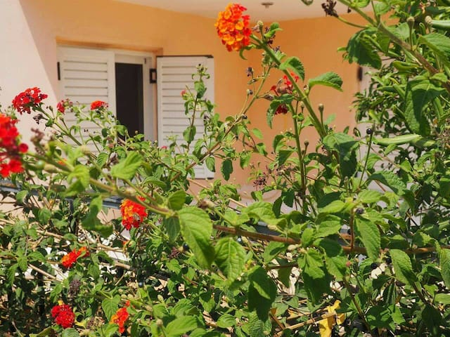 Peaceful apartment with lovely yard full of tees! - Kalamata - Wohnung