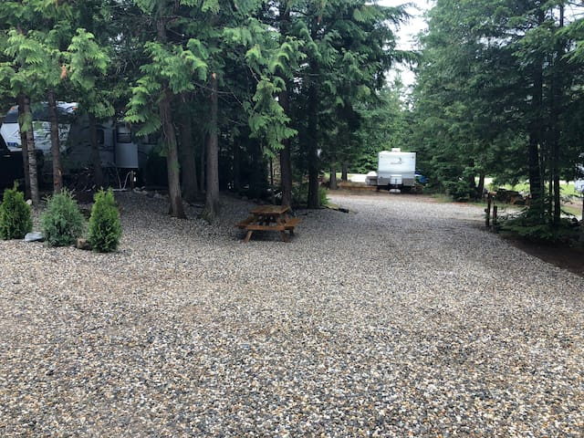 Lot 19 Secret Gem in the Forest in Sicamous BC