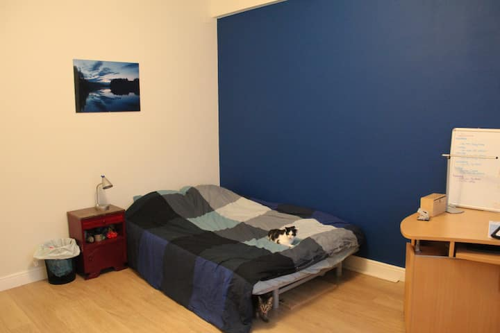 The Blue Room: home away from home in Antwerp City