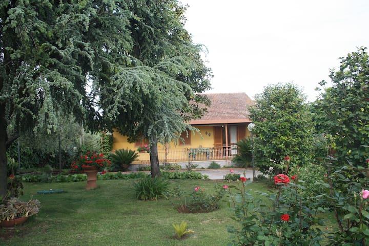 Graziosa Villa nel verde dei Castelli Romani - Velletri