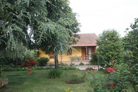 Graziosa Villa nel verde dei Castelli Romani - Velletri - Vila