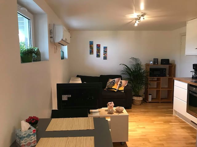 Lys & trivelig leilighet