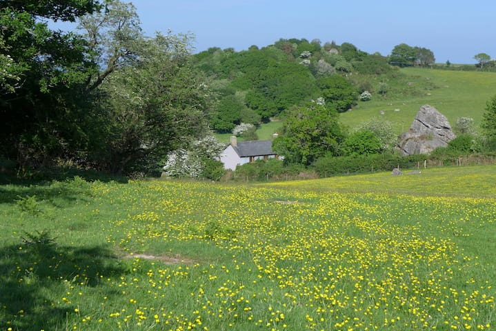 Beautiful Dartmoor Farmhouse - Moretonhampstead - Ev