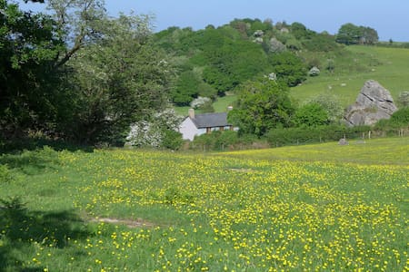 Beautiful Dartmoor Farmhouse - Moretonhampstead