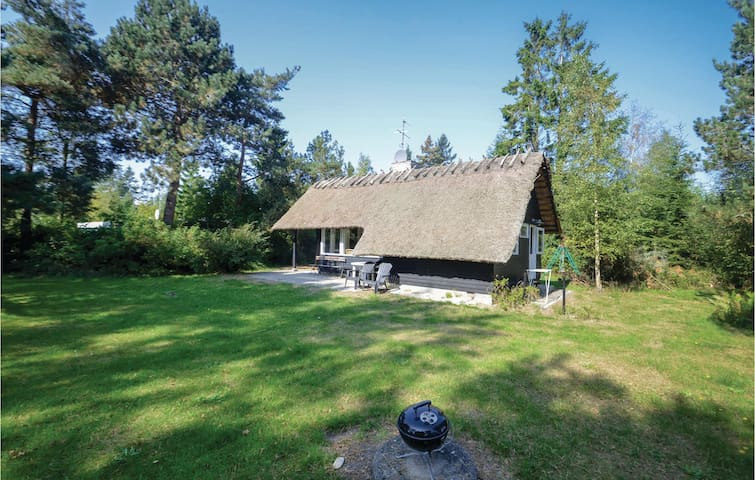 Holiday cottage with 2 bedrooms on 50m² in Væggerløse