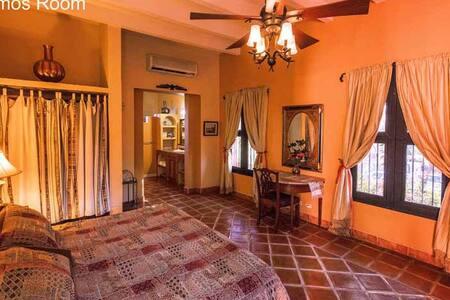 Alamos, Sonora, Loma de Guadalupe Mt Alamos Room
