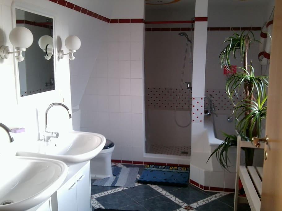 Badezimmer mit großer Dusche und Badewanne