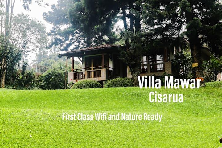 Villa Mawar, Warung Gunung.  First Class