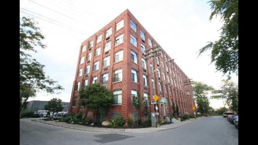 Studio loft  (basement) near lively Queen West