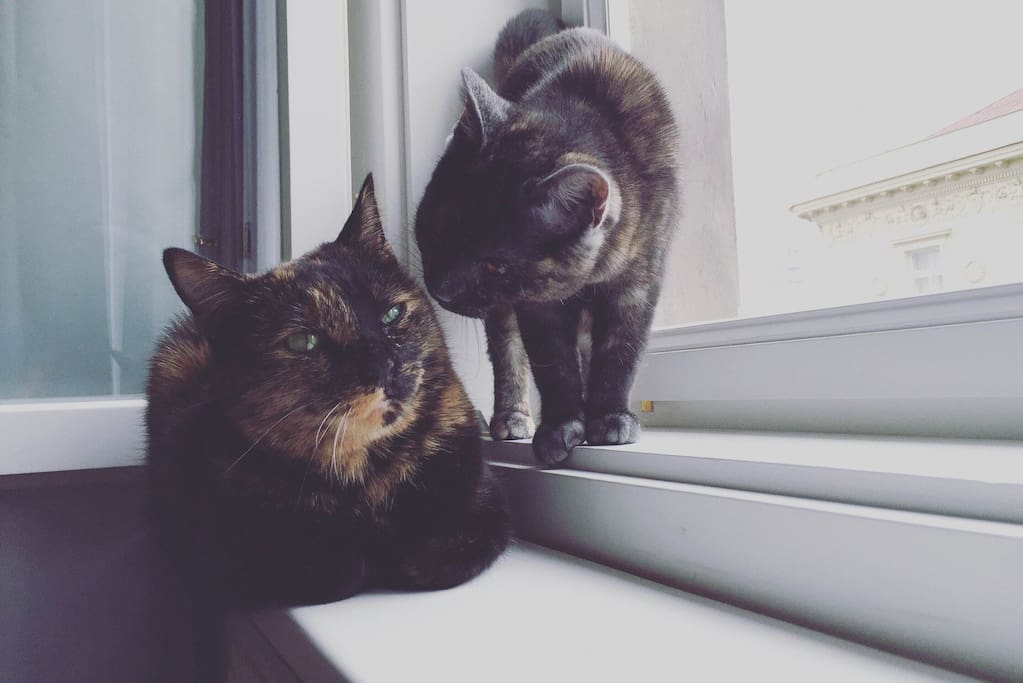 Annie and Nara