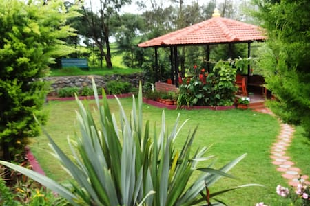 A Tea plantation escape At green nest - Kotagiri