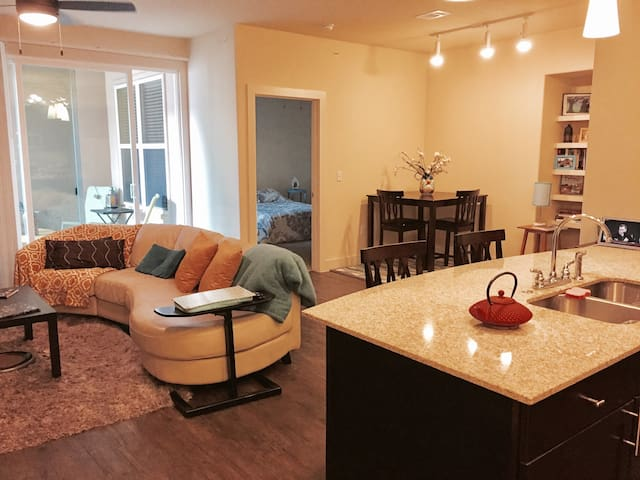 Beautiful Place in Domain - Austin - Apartment