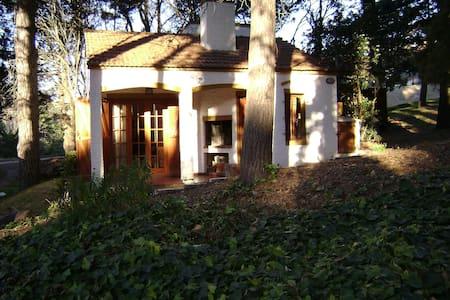 Alquilo casa de estilo en el bosque. - Valeria del Mar - Dům