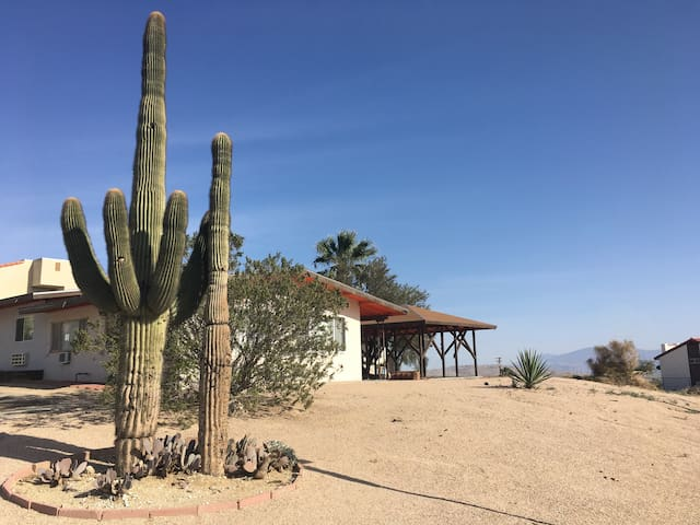 View of side of property with large Saguaro cactus
