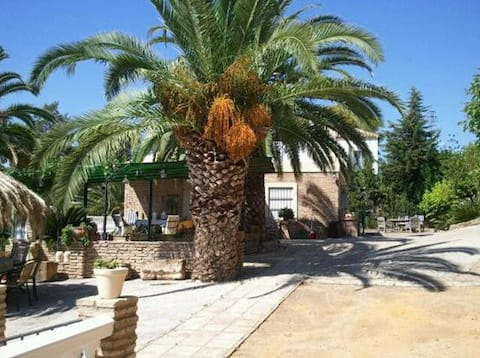 bungalow+swimming pool near Sevilla