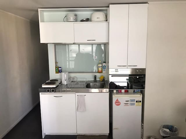 CBD apartment. Room available