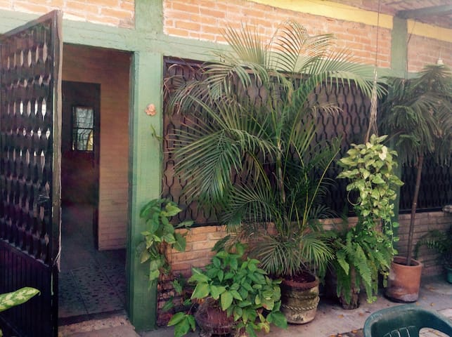 Bungalow with Garden Courtyard under a giant tree. - San Blas - Apartamento