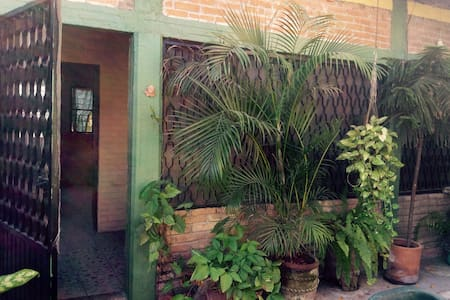 Bungalow with Garden Courtyard under a giant tree. - San Blas