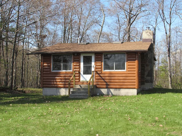 STONEY POINT Cabin #2 (Nahma) Big Bay de Noc: Sleeps 4, Dog friendly, Great Swim