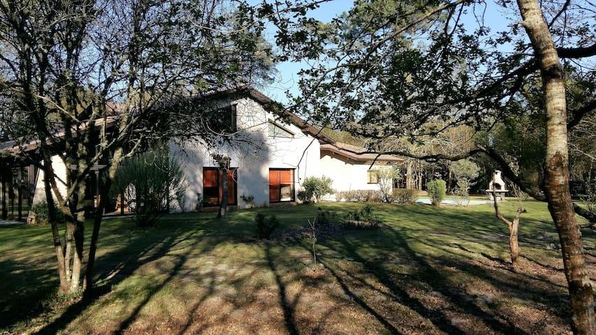 Belle villa nature - Sainte-Eulalie-en-Born - Vila