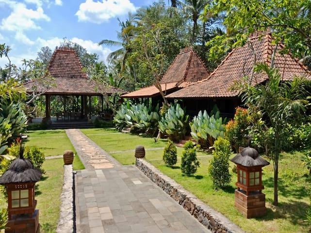 Cosy Family Eco-Lodge in Rural Bali