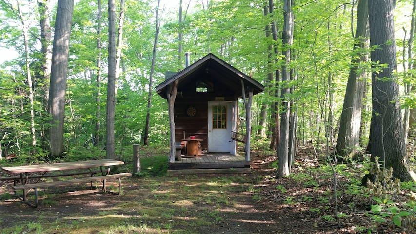 Hemlock Hideaway-Rustic Cabin on the Grand River