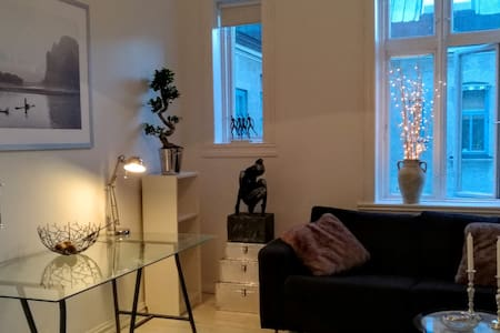 Next to palace grounds, 3 min from airport train- - Oslo