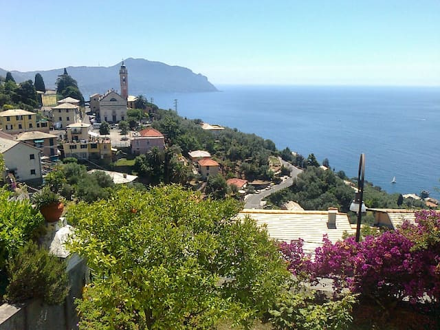 Vacanza vistamare in villa con giardino - Pieve Ligure - Villa