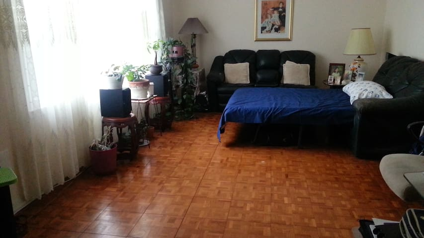 Large RM in Piscataway New Jersey near Rutgers/NYC - Piscataway Township - Casa
