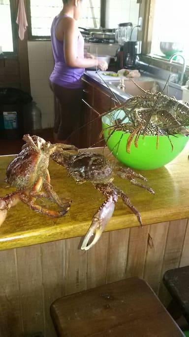 Langostas y cangrejos comprados a los pescadores