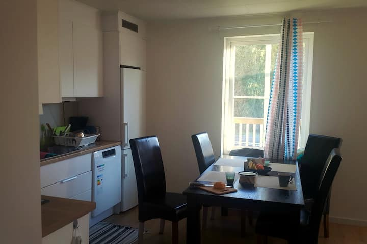 Newly whole apartment for family trip&vacations