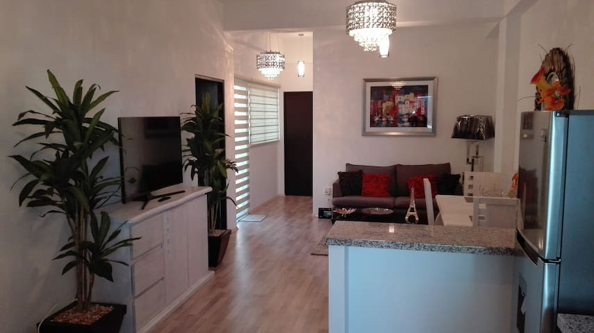 Excellent Apartment in the middle of Mexico City!