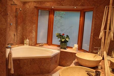 3000 ft Spacious Comfortable Elegant Home