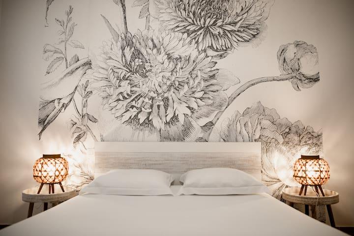 Bel appartement / coeur historique Montpellier