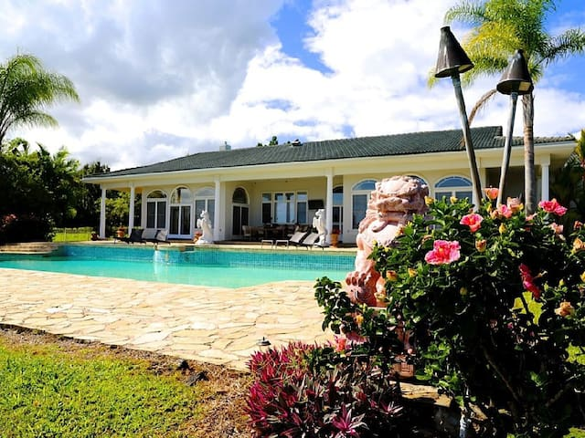 NEW  Ocean View Estate with Pool! - Hilo - House