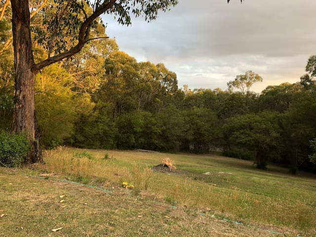 Rear Garden area and access to 4 acres of natural Dry Grassland Bush.. Can walk through to view, micro environments & rare fungi with first Autumn rains. Various types of moss areas. Tea Tree under a canopy of various Eyucalptus and String Bark gums.