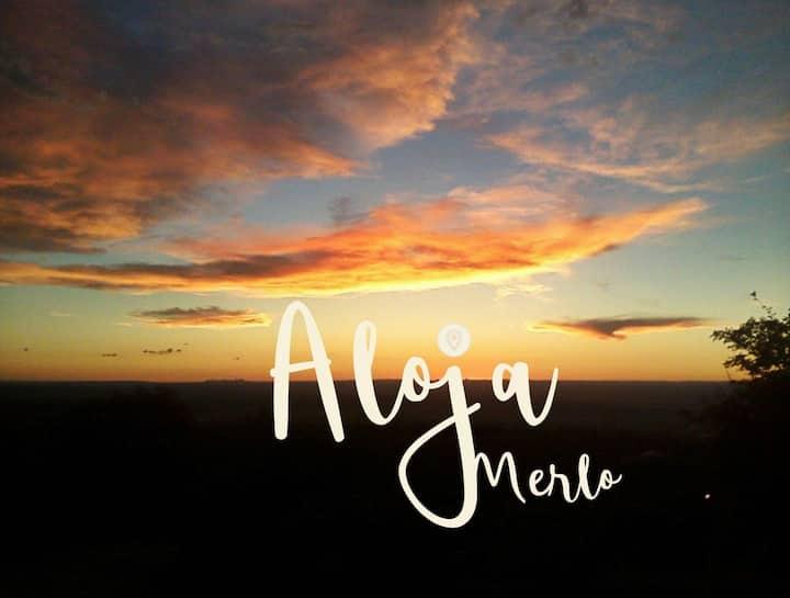 Aloja Merlo