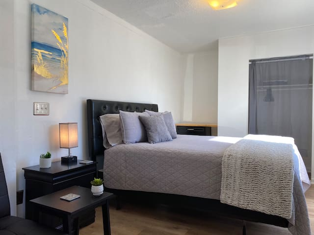 Cozy & Cute Private Apartment Downtown-Queen Bed