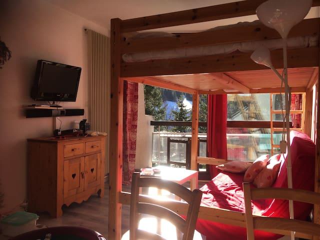 Grand studio plein sud avec balcon - Villard-de-Lans